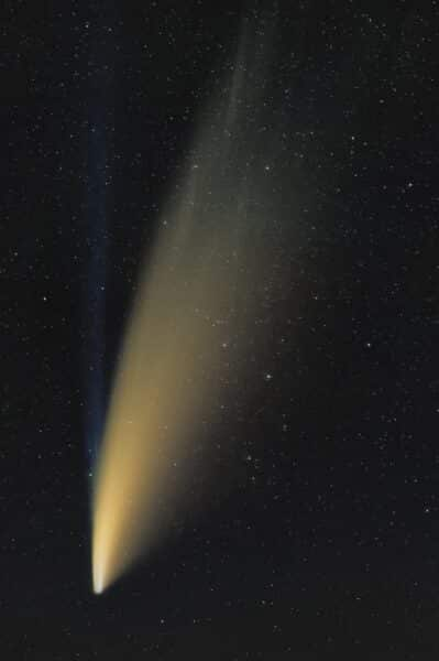 bild des kometen neowise